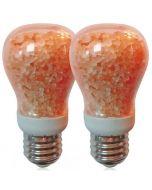 WBM Smart Led Salt Light Bulb (2 Pack)