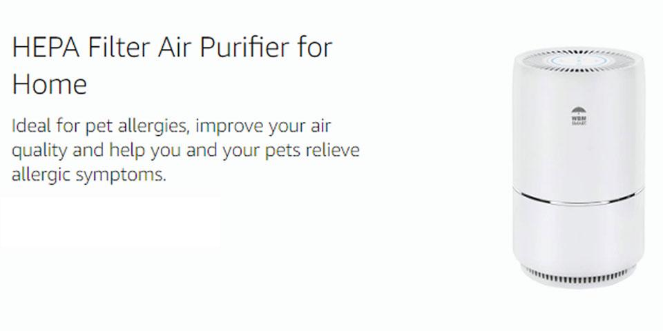 Home-purifier